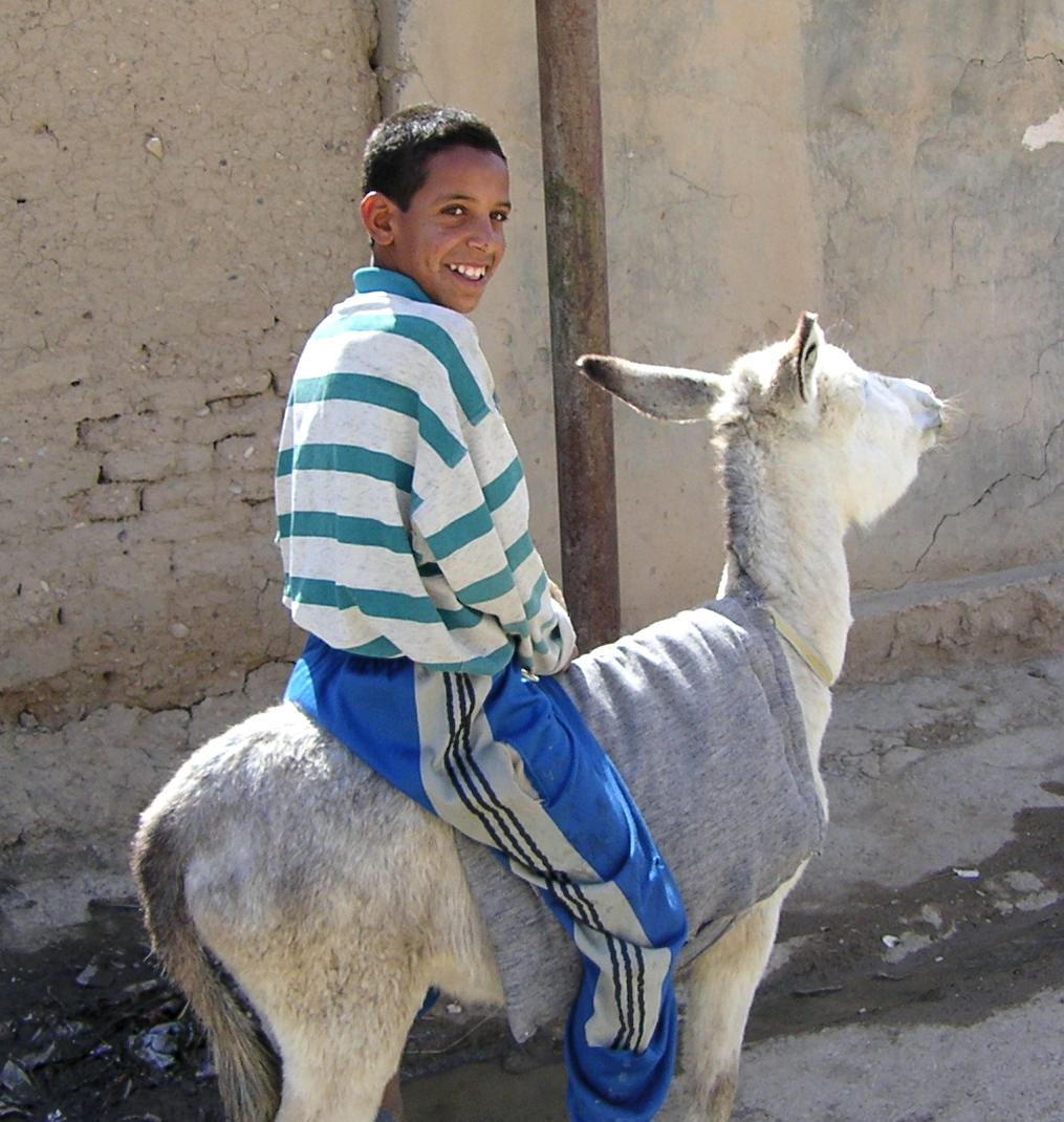 Photograph of teenager on a donkey in Iraq. Photograph by an American soldier of C Co, 1/252 Army Reserve Battalion.
